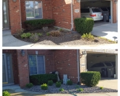 Before and after landscaping clean up